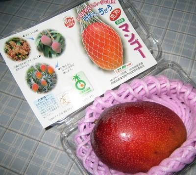 200764_mango