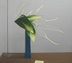 2008117_004