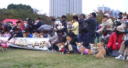 2008119all_2