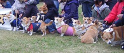 2008119all_up2