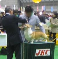 20081221_cogi4