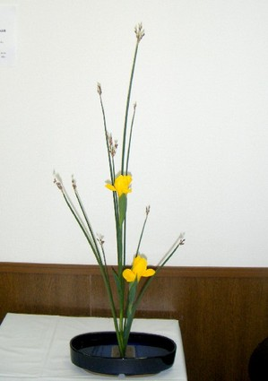 200942_007
