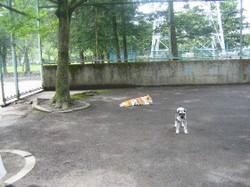 2009728nana_003