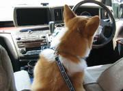 Car_2_2007430nana_005_1
